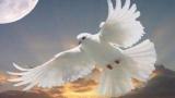 Православната църква почита Свети Дух