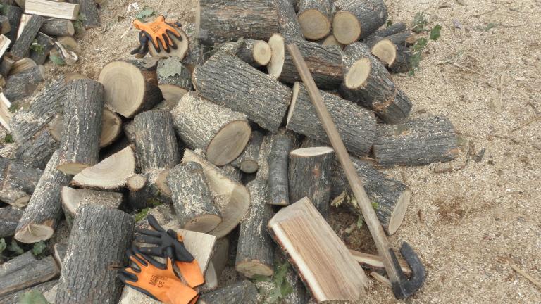 В Родопите плащат дърва, а карат зимата на студено