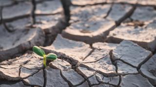Най-голямото проучване в света: Хората искат борба с климатичните промени