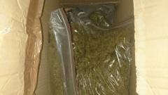 """27-годишен рецидивист разпространявал марихуана в столичния """"Банишора"""""""