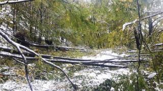 Проходите Петрохан и Троян - Кърнаре остават затворени