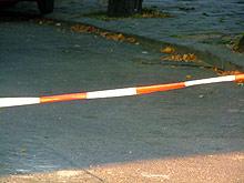 Млад мъж уби възрастна жена във видинско село