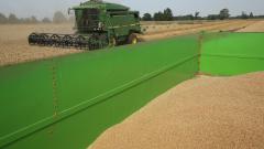 2016-а донесе най-добрата реколта от пшеница за последните 20 години