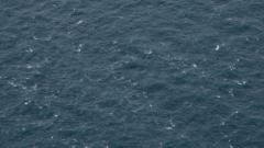 Фекални води се изливат в морето край Черноморец