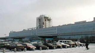Специални кучета охраняват руските летища и гари