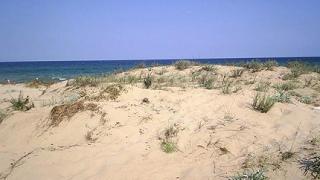Екогласност: Строи се върху дюните в Слънчев бряг!