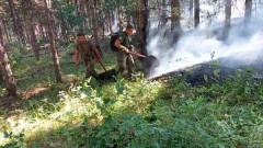 Военни се включват в гасенето на пожара в Сакар планина