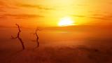 Глобалното затопляне и ще бъде ли 2020 най-топлата година в историята