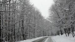 """Сняг и вятър затвориха пътя до х. """"Алеко"""" на Витоша"""