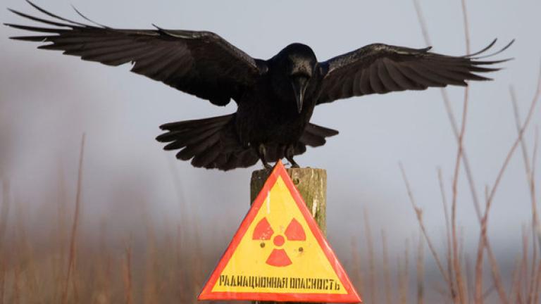 Отбелязваме 32 г. от аварията в Чернобил