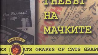 """Българският роман """"От чекмеджето"""" е пародия и веселба"""