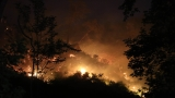 Спешни мерки и солени глоби срещу горските пожари в Гърция