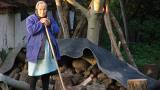 """И това лято организират баба и дядо """"назаем"""" в село Долни Вадин"""