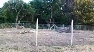 """Парк """"Бедечка"""" с и без сгради обсъждат общинарите в Стара Загора"""