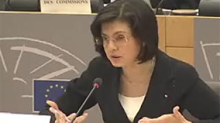 Евродепутатите впечатлени от Кунева