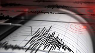 Силно земетресение до Нова Зеландия