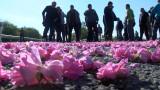 Розопроизводителите блокираха пътя Казанлък - Стара Загора
