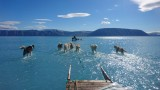 Снимка разкрива голата реалност на топенето на леда в Гренландия