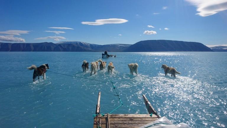 Снимка разкрива суровата реалност на топенето на леда в Гренландия