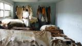 Веганите настояват за тотална забрана на кожодерската индустрия у нас