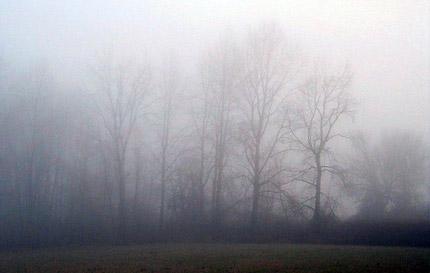 "Мъгла на магистрала ""Тракия"""
