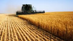 Украйна забрани вноса на слънчогледово олио, пшеница и хартени продукти от Русия