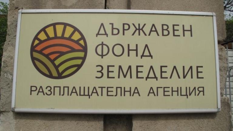 Иванка Мизова вече не е зам.-директор на ДФЗ