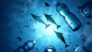 Рибите няма да са същите. Ето и защо