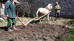 Най-ниската производителност на труда е в аграрния сектор