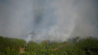 250 души се борят с пожара в Стара Кресна