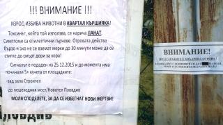 Някой трови домашните кучета в Пловдив