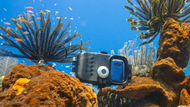 Как да превърнем телефона си в подводна камера