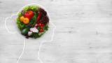 Мозъкът, диетите и как хранителният режим влияе на функционирането му