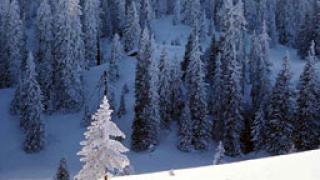 Пътят към 9 планински села около Трявна е непроходим
