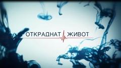 """През март тръгва новият български сериал """"Откраднат живот"""""""