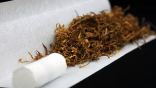 75% от тютюна за свиване в страната е контрабанда