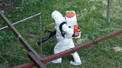 Удължават граничния контрол срещу Африканската чума по свинете до 2023 г.