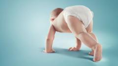 Човешка еволюция - все повече хора се раждат без мъдреци, но с допълнителна артерия