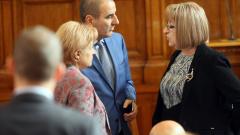 С дебат за пирати и гущерови опашки приеха оставката на Ирена Коцева