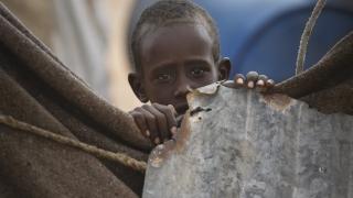 Децата в Сомалия застрашени от остро недохранване