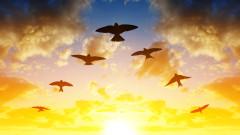 Колко са птиците на планетата