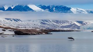Норвежки план за Арктика може да причини екокатастрофа и военен отговор на Русия