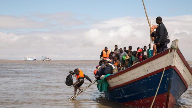 300 до 400 тела се виждат по бреговете на пътя