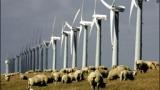 Бурно развитие на вятърните ферми в Испания
