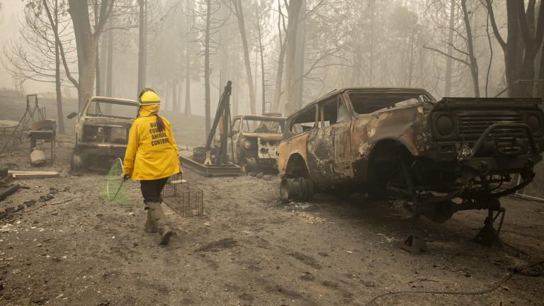 Повече от 30 души са загинали в горските пожари, които