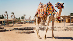 Египет, Хургада 2020 - Ранни записвания