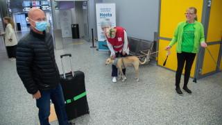 """Финландия отчита """"фантастични"""" резултати при откриването на COVID-19 с кучета"""