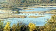 """Замръзна езерото в резервата """"Сребърна"""""""