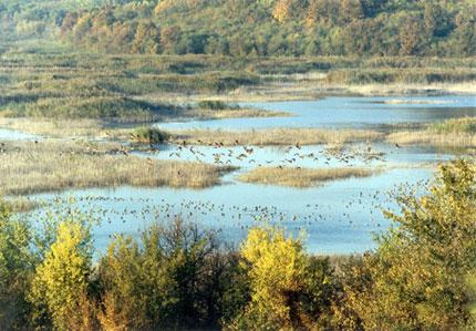 Модерна еколаборатория в резервата Сребърна