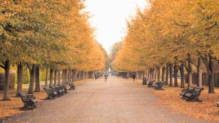 Какво да знаем за есенното равноденствие